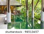 luxury villa with private...   Shutterstock . vector #98513657