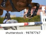 Horse Jump A Hurdle In A...
