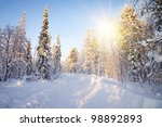winter in deep forest. sunny... | Shutterstock . vector #98892893