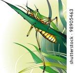 Grasshopper In The Grass....