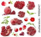 collection of red pomegranate... | Shutterstock . vector #99006947
