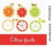 vectors of citrus fruits  in... | Shutterstock .eps vector #99204383
