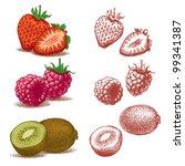 strawberry  raspberry and kiwi. ... | Shutterstock .eps vector #99341387