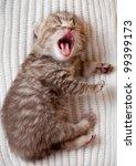 Newborn Yawning British Baby...