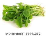 fresh turnip tops (turnip greens) on a white background - stock photo