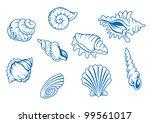 set of ocean seashells isolated ...
