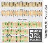 5 string bass basic major scale ... | Shutterstock .eps vector #99811703
