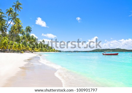 red boat in a tropical beach in