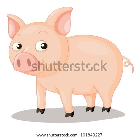 illustration of a cute pig on
