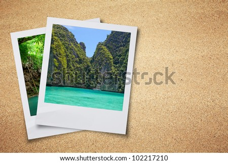 dry sand earth background and
