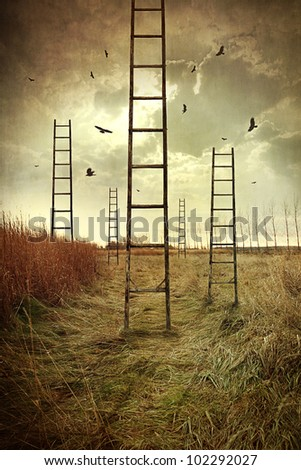 ladders reaching to the sky in
