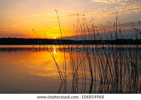 morning lake landscape with