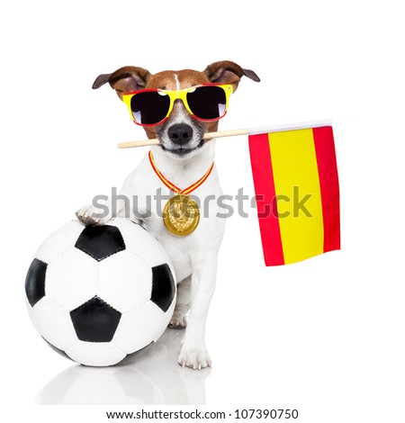 dog as soccer with medal and