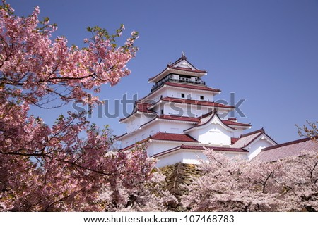 aizuwakamatsu castle and cherry