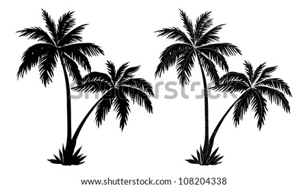 tropical palm trees  black