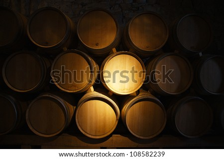 wine barrels in a old wine