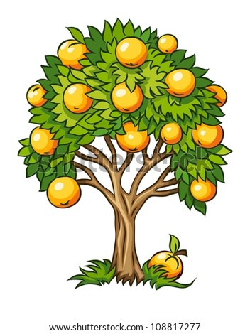 fruit tree vector illustration
