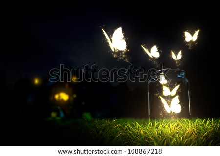 magic butterfly take off from