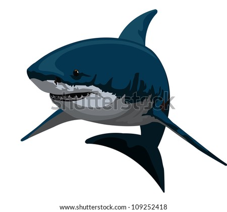 shark  blue and gray  vector