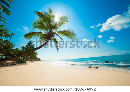 untouched tropical beach in sri