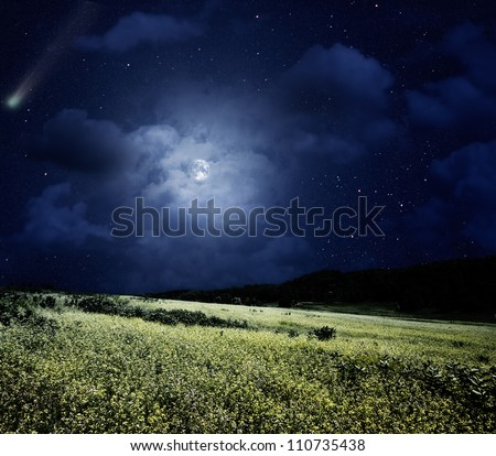 nightly meadow natural summer