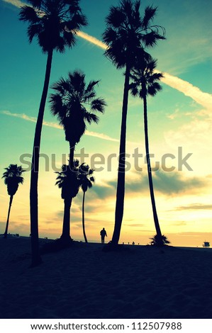 venice beach sunset retro colors