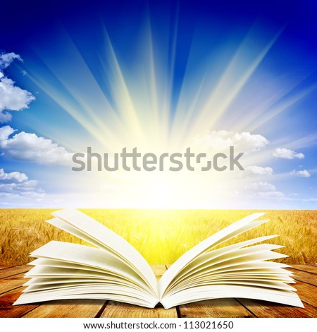open book on wooden plank over