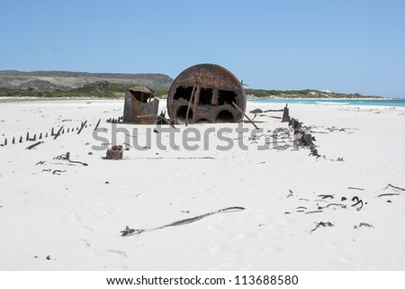 shipwreck kakapo at the beach