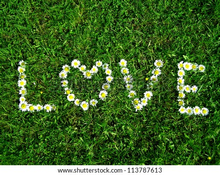 love   flowers text on the grass