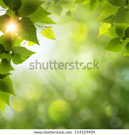 beauty natural backgrounds for