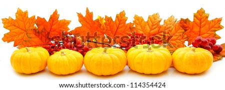 border or edge of pumpkins and