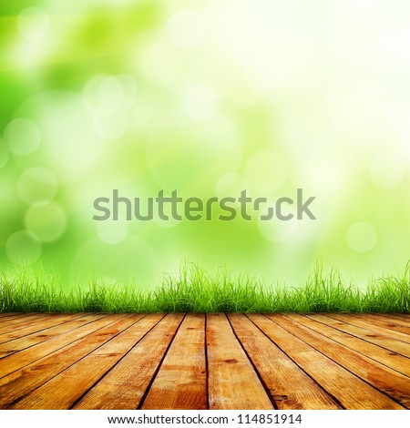 fresh spring green grass with