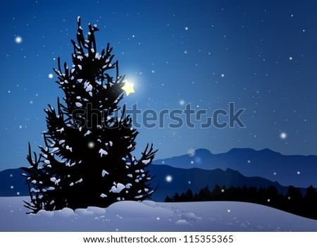 silent night with pine tree and