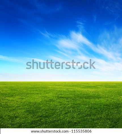 image of green grass field and