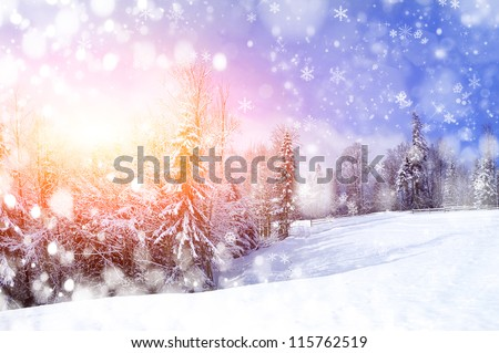 beautiful winter landscape with