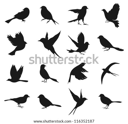 set of silhouettes of birds a