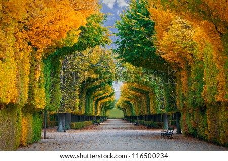 long road in autumn park