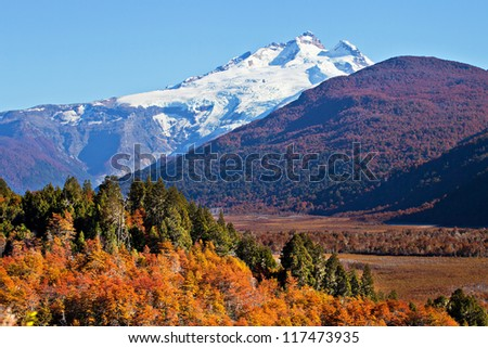 autumn in patagonia  argentina