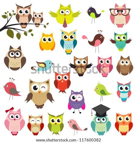 baykuş set