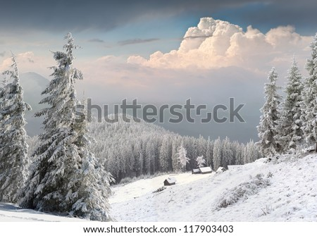 beautiful winter landscape in