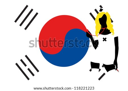 the flag of south korea with a