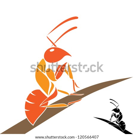 orange ants clinging to the