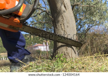 man with chainsaw cutting the