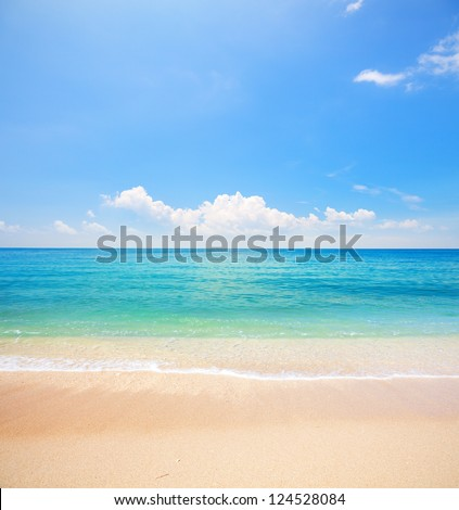 beach and tropical sea