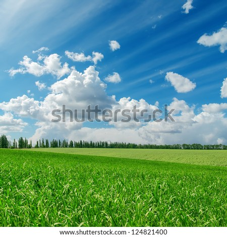 green grass under cloudy blue