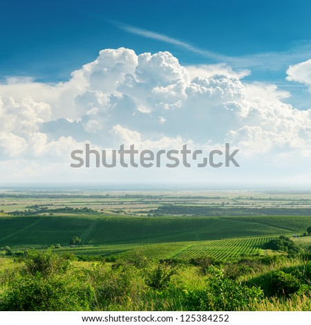 clouds over green vineyard