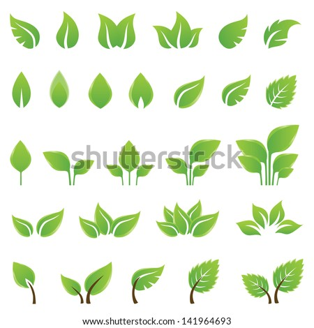 set of green leaves design