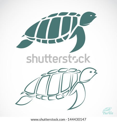 vector image of an turtle on
