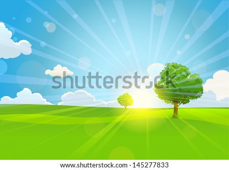 summer sunny morning with trees