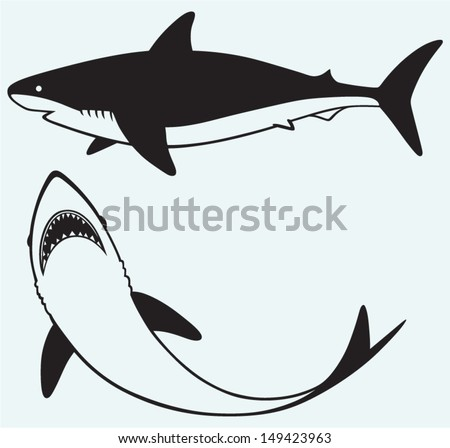 silhouette shark isolated on